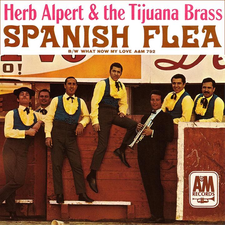 spanish_fleae_single